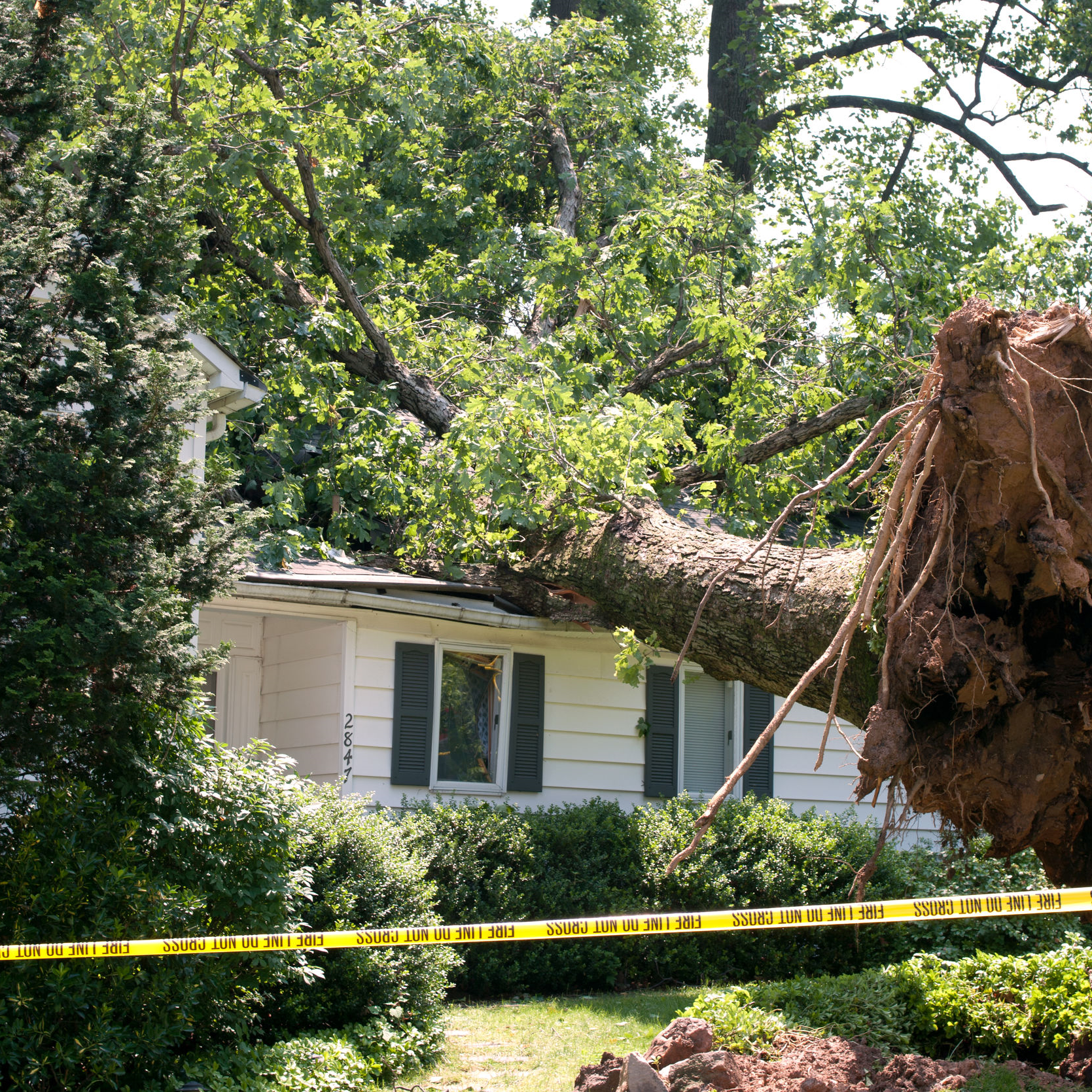 A tree falls on a roof after a storm.